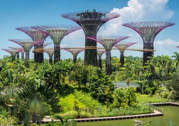 Jan 23-Jan 27: Singapore