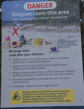 Maybe the dingo did eat the baby?