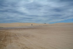 Port Stephens: port-a-potty in sand dune