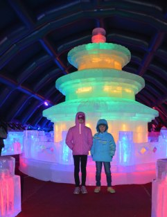 ice sculptures--warmer than outside