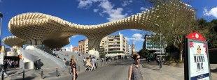Setas de Sevilla (Mushrooms--not the official name)
