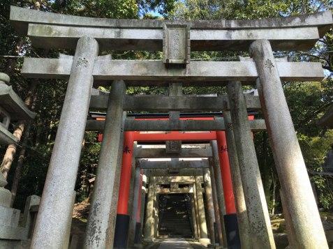 Tofuku-Ji Temple, Kyoto