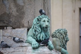 lion and his pets in Arles