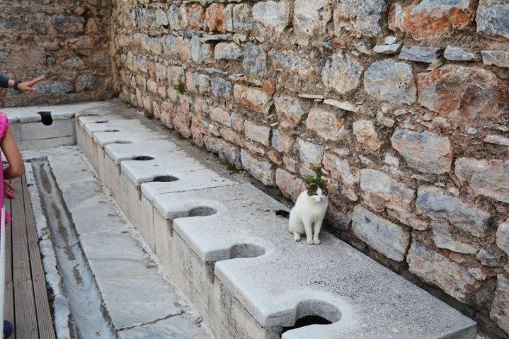 ancient public toilets, Ephesus, Turkey