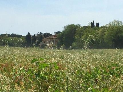 Roman countryside