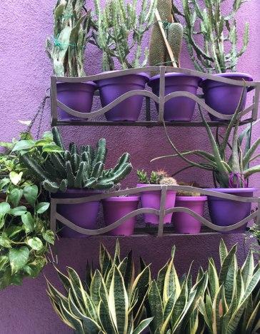 pots matching house, Burano, Venice