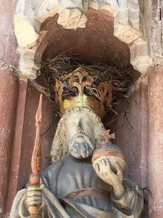 nest in crown