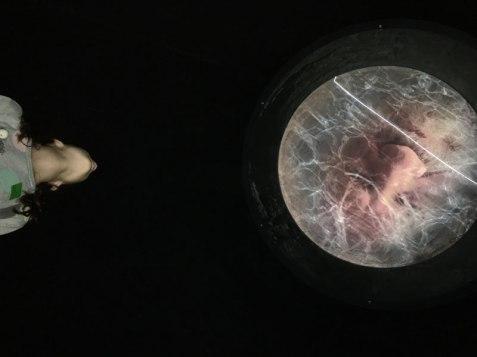 art installation, Brothers Grimm Museum, Kassel