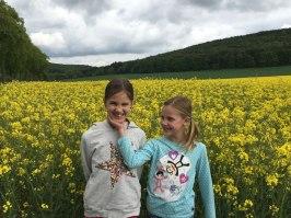 in a rapeseed field