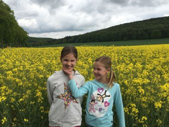in a rapeseed field