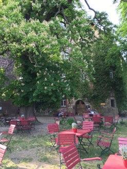 Rapunzel's castle courtyard