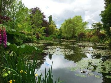 Monet's garden, Giverny