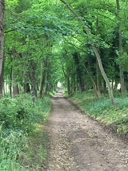 beautiful walk, Cotswolds