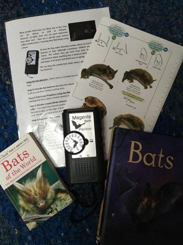 bat-detector kit
