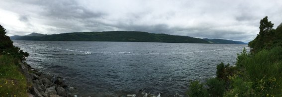 Nessie left that white trail as she swam away, Loch Ness